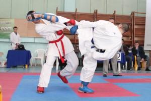 110327-ukr-wkf-harkiv-dozhuk1-sportbuk-com_